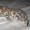 Бенгальские   котята .(пятнистые леопардики) #93535